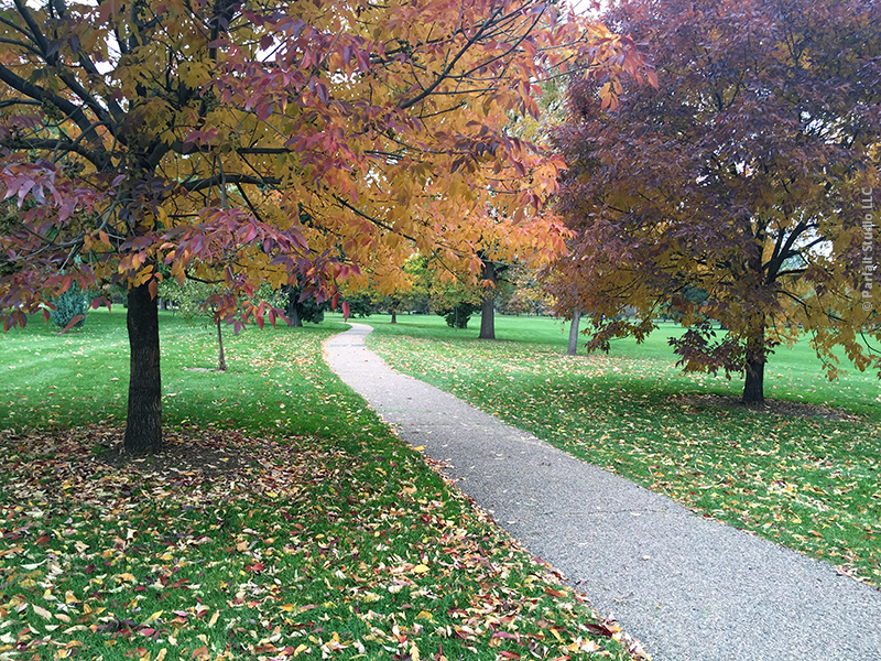 Walking through autumn leaves along a colorful park path can be almost as inspiring…and significantly crunchier.