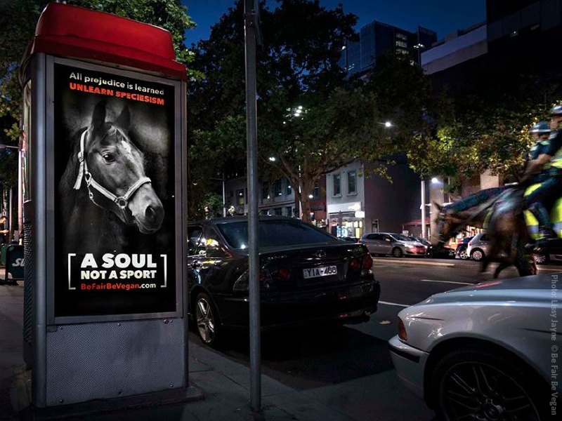 """Be Fair Be Vegan street poster: photo of a bridled horse with the headline: """"A Soul Not a Sport"""""""