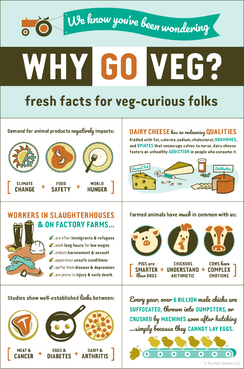 """We know you've been wondering…Why Go Veg?"" (fresh facts for veg-curious folks)"