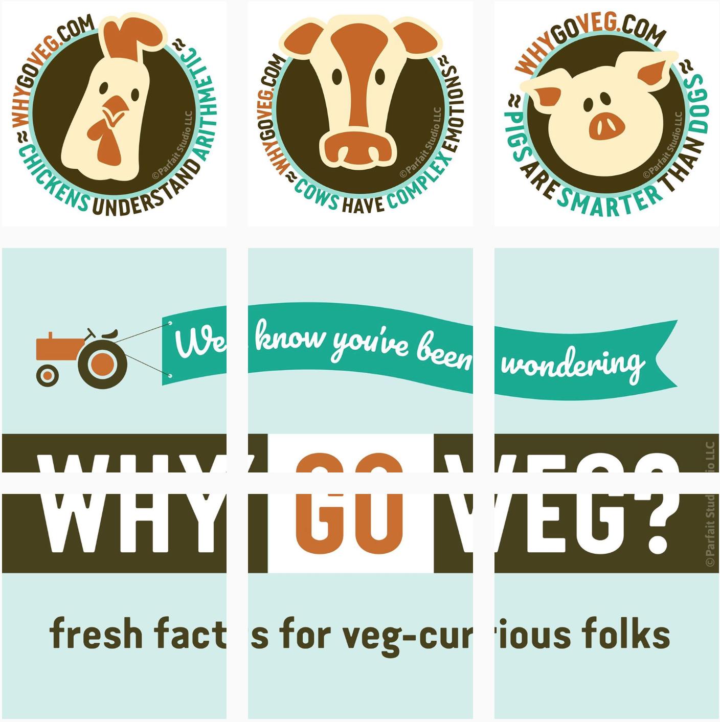 Why Go Veg? Instagram Feed